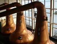 360°-GEO : Islay, le secret du whisky