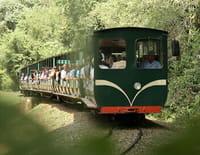 Des trains pas comme les autres : L'Argentine