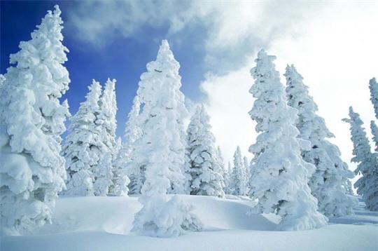 Géants de neige