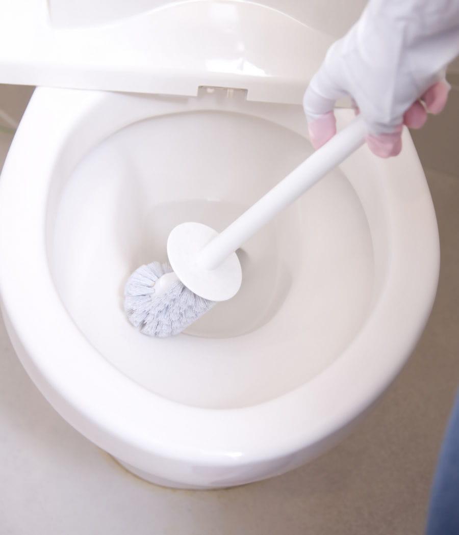 Brossette Salle De Bain Toulouse une brosse de toilette toujours propre