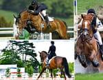 Equitation - Coupe des Nations de concours complet 2018