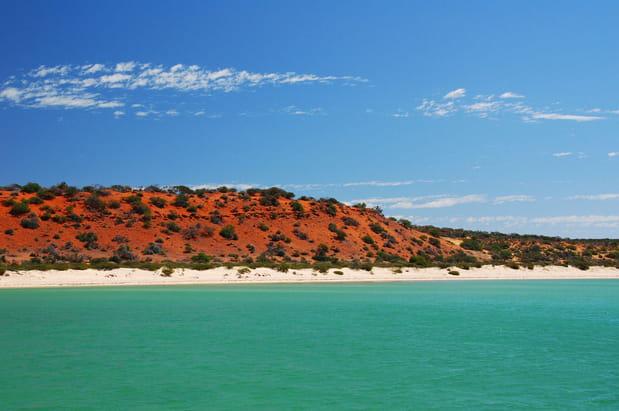 Shark Bay, Australie