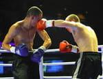 Boxe : Championnat du monde - Joshua Anthony / Ruiz Jr. Andy
