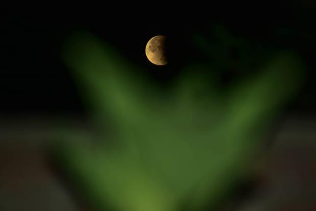 Les plus belles images de l'éclipse de Lune du 16juillet