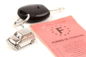 Fraude au permis de conduire : des people auraient acheté leurs permis !