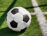 Football : Ligue des champions - FC Barcelone / Dynamo Kiev