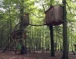 Cabanes perchées