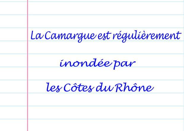 Camargue menacée