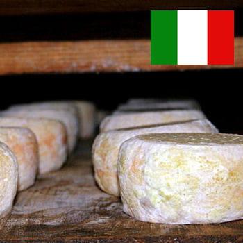 la vente du cazu marzu a été interdite en italie. pour vous en procurer,
