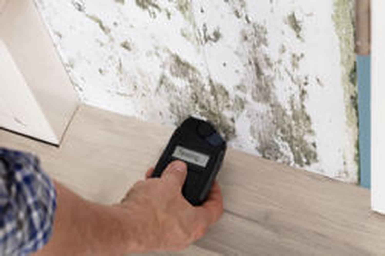 Testeur d'humidité: comment utiliser cet appareil?