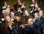Beethoven : «Triple Concerto pour violon, violoncelle et piano»