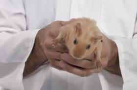 Cancer des testicules: un spot de prévention hilarant [VIDEO]