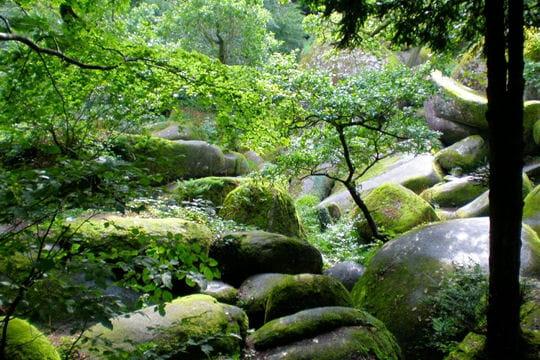 Le parc naturel régional d'Armorique