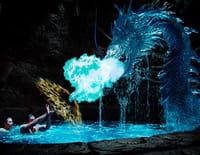 Les sirènes de Mako : A la poursuite du dragon d'eau