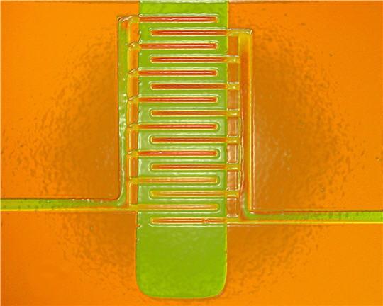 Un mini-transistor en plastique