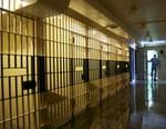 Inside: Les couloirs de la mort