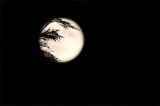 La Lune au clair