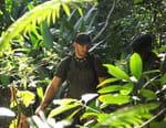 Les explorateurs : mission à haut risque