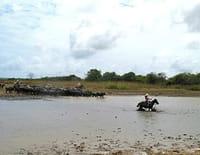 Les gens du fleuve : L'Amazone (1/2)