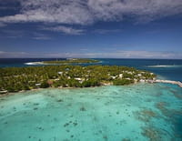 La plus grande forêt du monde : L'archipel des Tuamotu