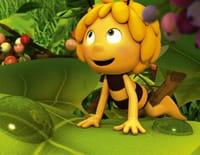 Maya l'abeille 3D : Poux poux pidou