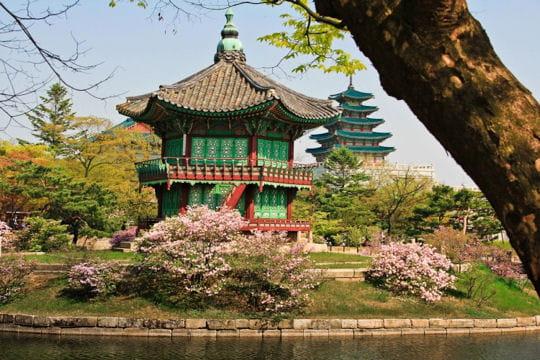 Des pagodes de charme