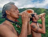 Hawaii  : Les fils d'Halawa