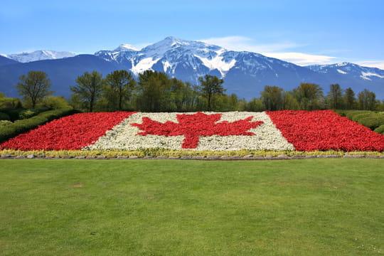 PVT Canada: critères, demande, sélection, quota 2019... Comment l'obtenir?