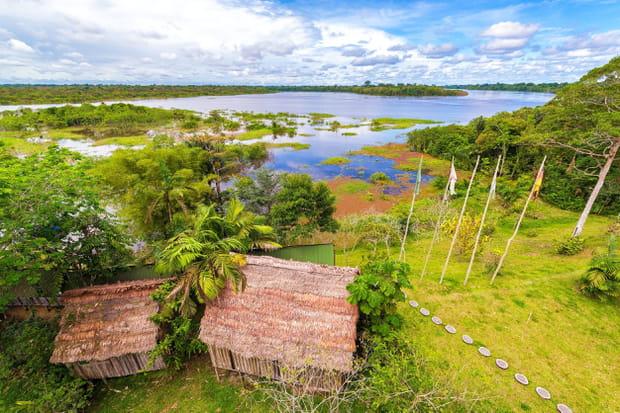 La réserve Javari au Brésil