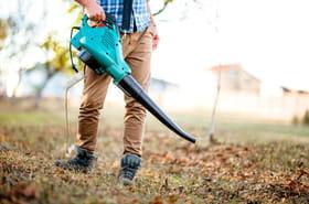 Aspirateur souffleur de feuilles: sélection des meilleurs modèles