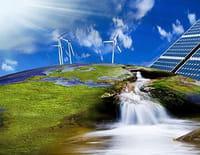 Les îles du futur : Samso : l'électricité alternative