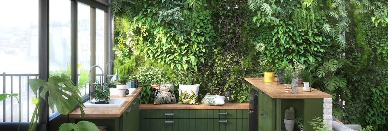 Un mur végétal chez soi, c'est possible! Nos coups de cœur