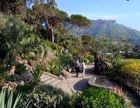 Jardins d'ici et d'ailleurs : La Mortella