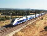 TGV, la réussite française