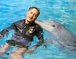 Le jour du dauphin