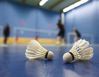 Badminton - Internationaux de France