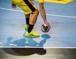 Handball : Championnat du monde masculin - Autriche / France