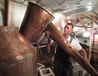 Alcool de contrebande : Rébellion du whisky