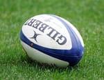 Rugby : Tournée des Lions britanniques et irlandais - Afrique du Sud / Lions britanniques et irlandais