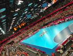 Handball : Ligue des Champions - Paris-SG / Dinamo Bucarest
