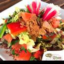 Entrée : Allo Liban  - Une cuisine libanaise fraîche et savoureuse, pour votre confort... -   © Allo Liban