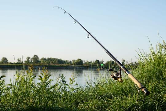 Canne à pêche: comment bien choisir