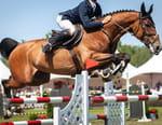 Equitation : The Spruce Meadows Masters - Epreuve de saut d'obstacles