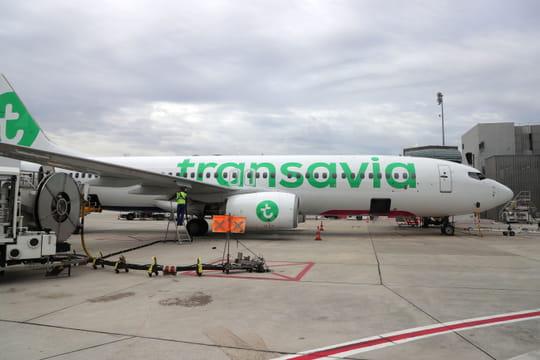 Transavia: la compagnie propose 6lignes temporaires au départ de Paris pour Noël