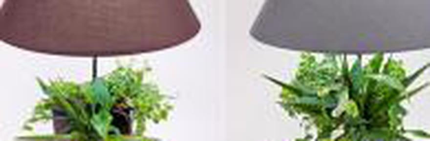 Les drôles d'inventions du concours Lépine 2011