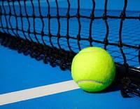 Tennis - Tournoi ATP de Vienne 2019