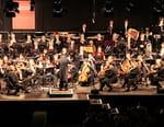 Le rêve d'un chef : l'Orchestre des Roms et Sintis
