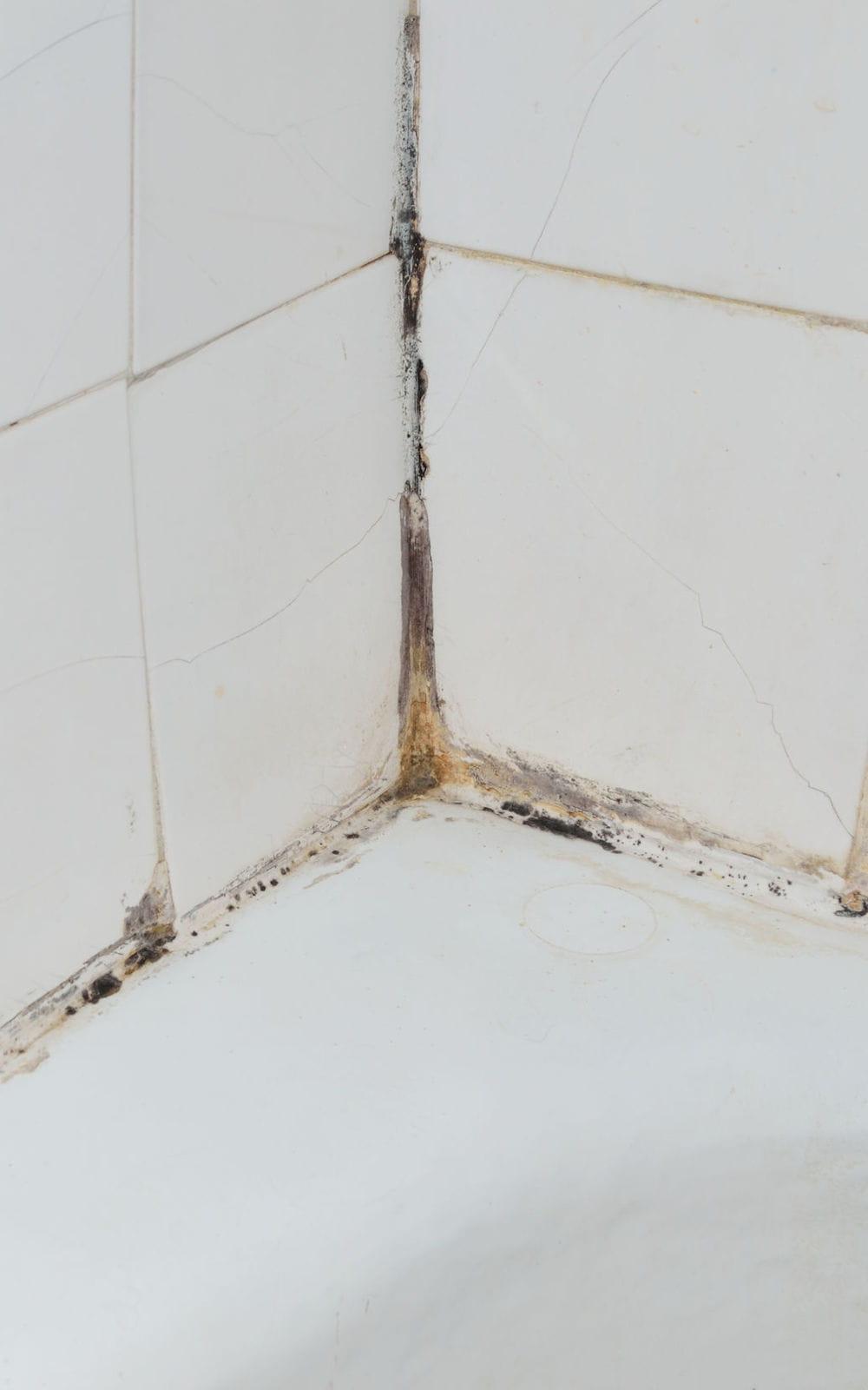 Nettoyant Joint De Carrelage traiter les taches de moisissure dans la salle de bains