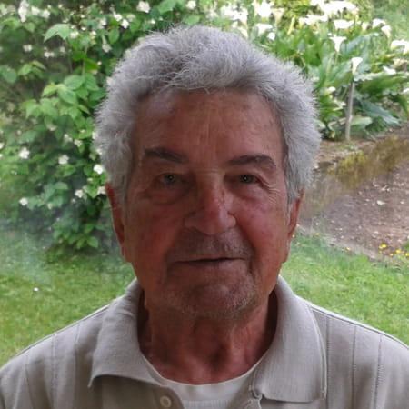 Mario Mammoliti