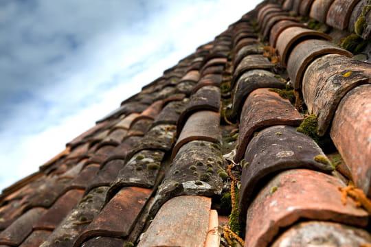 Antimousse: la solution pour traiter une toiture